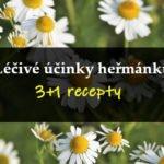 Léčivé účinky heřmánku + recepty