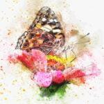 Akvarel - malování